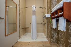 Queen Room with Roll In Shower - Mobility Access/Non-Smoking