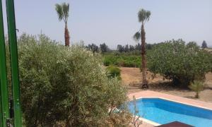 Palm House, Villas  Mandria - big - 9