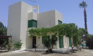 Palm House, Villas  Mandria - big - 1