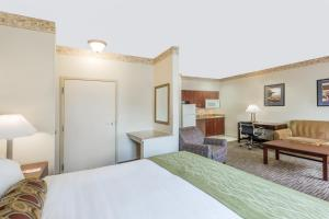 King Suite with Sofa Bed and Kitchen - Non-Smoking