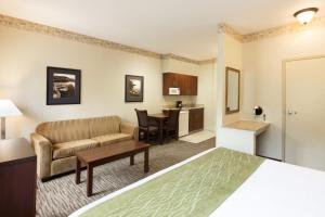 Studio King Suite with Sofa Bed - Non-Smoking