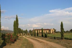 Il Grifone A Cortona Residence, Apartmánové hotely  Cortona - big - 33