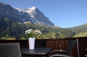 Apartment Renata, Appartamenti  Grindelwald - big - 1