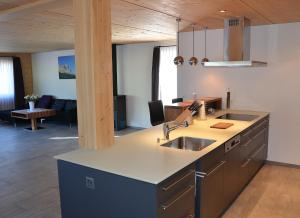 Apartment Renata, Appartamenti  Grindelwald - big - 24