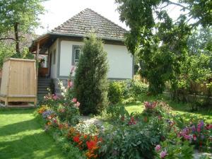 Firtos Vendégház, Гостевые дома  Firtuşu - big - 4
