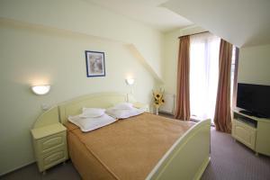 Hotel Ruia, Hotely  Poiana Brasov - big - 9