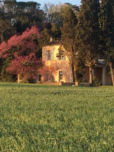 Château Pech-Celeyran, Case vacanze  Salles-d'Aude - big - 35