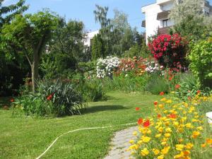 Rosen Villa Hévíz, Apartmány  Hévíz - big - 22