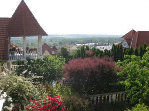 Rosen Villa Hévíz, Apartmány  Hévíz - big - 17
