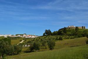Pousada Convento de Arraiolos, Hotels  Arraiolos - big - 42