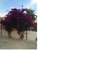 Villa Amico B&B, Panziók  Agrigento - big - 32