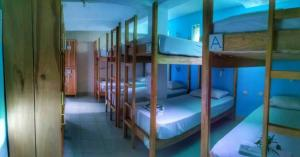 Bed in 8-Bed Dormitory Room