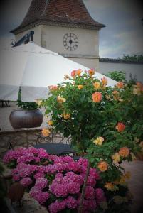 Manoir du Bois Mignon, Bed and Breakfasts  Le Fleix - big - 42