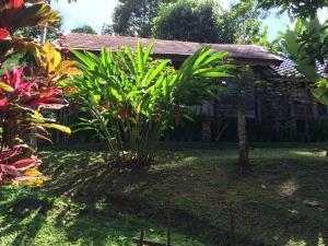 Mi Casa Ijen Guest House, Penzióny  Licin - big - 3