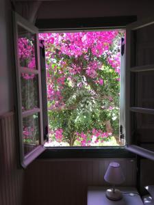 Patmos Villas, Appartamenti  Grikos - big - 98