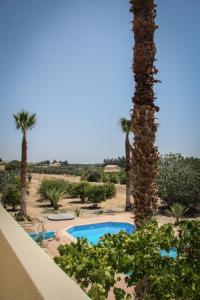 Palm House, Villas  Mandria - big - 30
