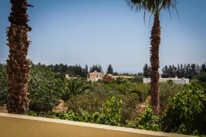 Palm House, Villas  Mandria - big - 14