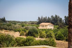 Palm House, Villas  Mandria - big - 11