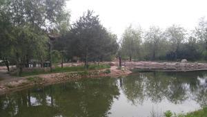 Sun Senlin Farm Stay, Kúriák  Jencsing - big - 10