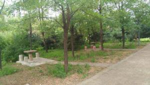 Sun Senlin Farm Stay, Kúriák  Jencsing - big - 16
