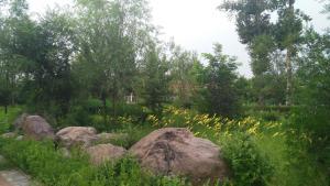Sun Senlin Farm Stay, Kúriák  Jencsing - big - 17