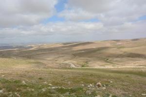 Desert Call, Bed and breakfasts  Arad - big - 60