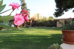 Finca Can Toni, Country houses  Ibiza Town - big - 58
