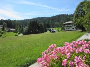 Haus Heidi, Ferienwohnungen  Ramsau am Dachstein - big - 39