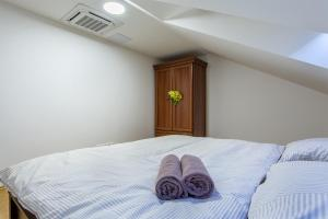 Superior Angel Apartment, Apartmanok  Prága - big - 8