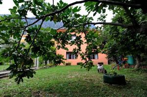 Apartments Vido, Apartmanok  Kotor - big - 17