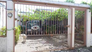 Paraiso Tropical, Alloggi in famiglia  Liberia - big - 29