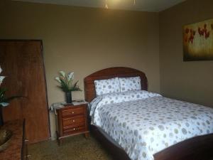 Ocean View Suites Luquillo, Апартаменты  Лукильо - big - 23