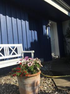 Ferienwohnungen Reetwinkel in Wieck, Apartmanok  Wieck - big - 104