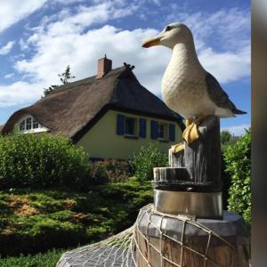 Ferienwohnungen Reetwinkel in Wieck, Apartmanok  Wieck - big - 103