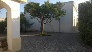 Casa Salentina, Pensionen  Patù - big - 13