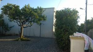 Casa Salentina, Pensionen  Patù - big - 5