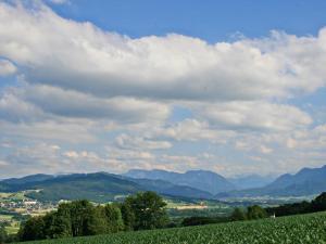 Chalet Zehetner, Alpesi faházak  Schlierbach - big - 13