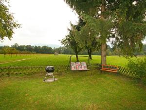 Chalet Zehetner, Alpesi faházak  Schlierbach - big - 6