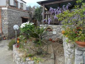 Casa Vacanze Li Galli, Appartamenti  Sant'Agnello - big - 47