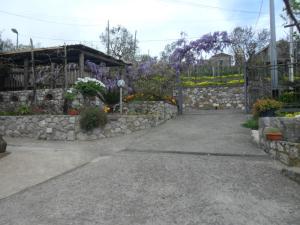 Casa Vacanze Li Galli, Appartamenti  Sant'Agnello - big - 52