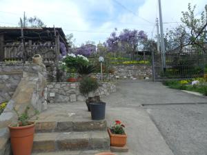 Casa Vacanze Li Galli, Appartamenti  Sant'Agnello - big - 53