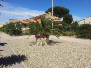 Holiday Home Les Maisons du Soleil, Дома для отпуска  Пор-Лекат - big - 10