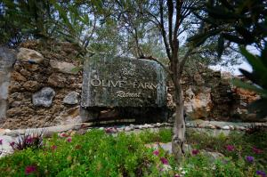 The Olive Farm Guest House (40 of 68)