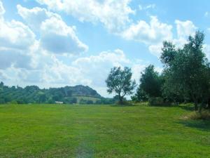 Locazione turistica Il Casale, Holiday homes  Vescovile - big - 13