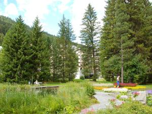 Apartment Allod-Park.26, Appartamenti  Davos - big - 9