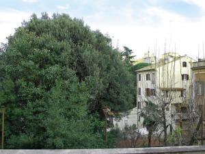 Locazione turistica Apartment Fori Imperiali Enchanting
