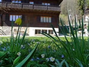 Chalet Riant Soleil, Holiday homes  Arveyes - big - 12