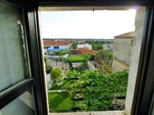 Holiday Home Jasminka, Holiday homes  Zadar - big - 18