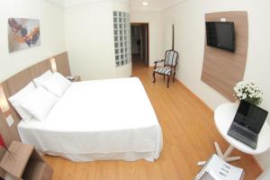 Premier Parc Hotel, Hotely  Juiz de Fora - big - 4