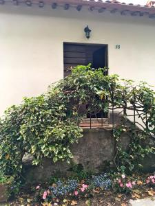 Our Place in Tuscany, Case vacanze  Coreglia Antelminelli - big - 22